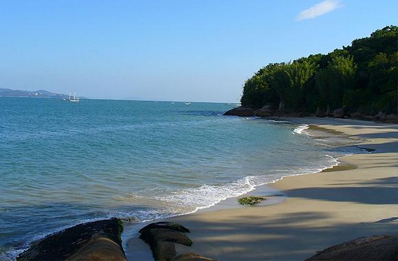 Praia jurere internacional - 1 5